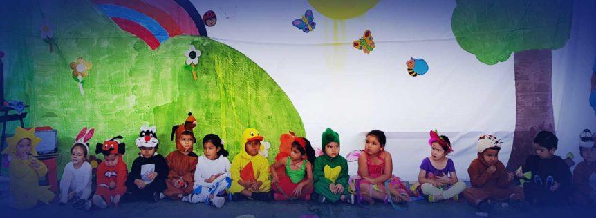 Proyectos Pedagógicos de Aula, Nivel Maternal
